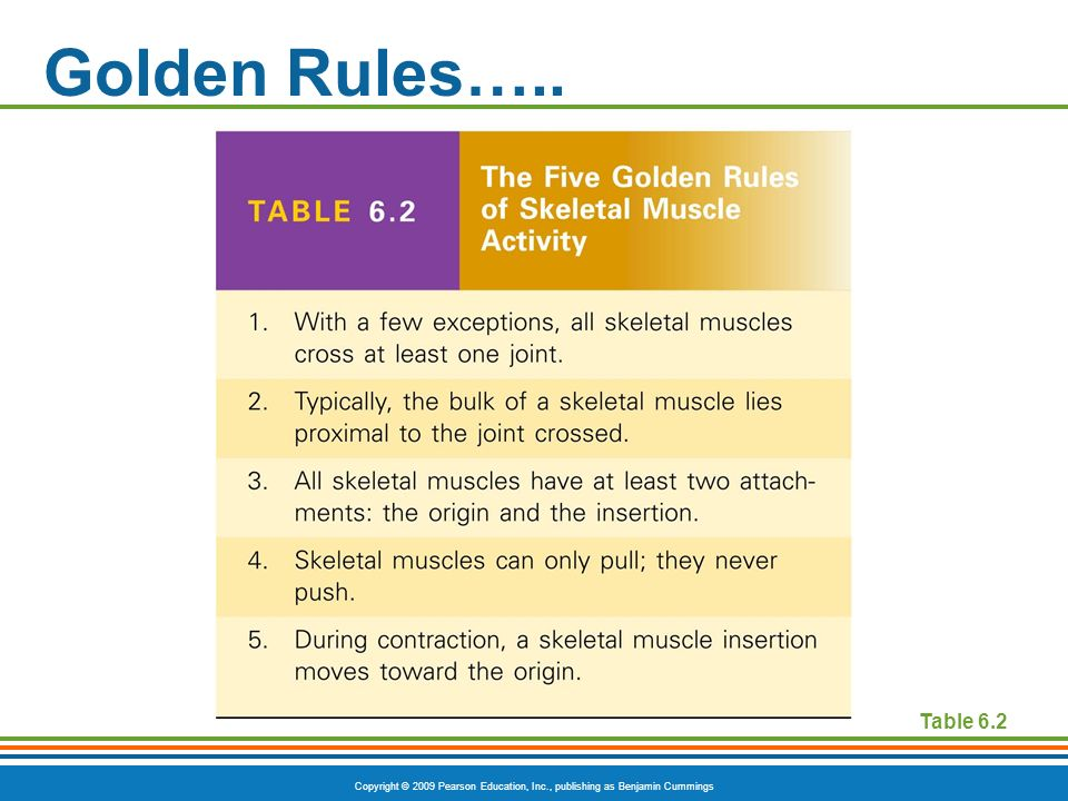 Golden Rules….. Table 6.2