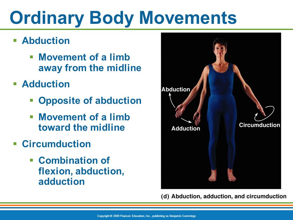 Ordinary Body Movements