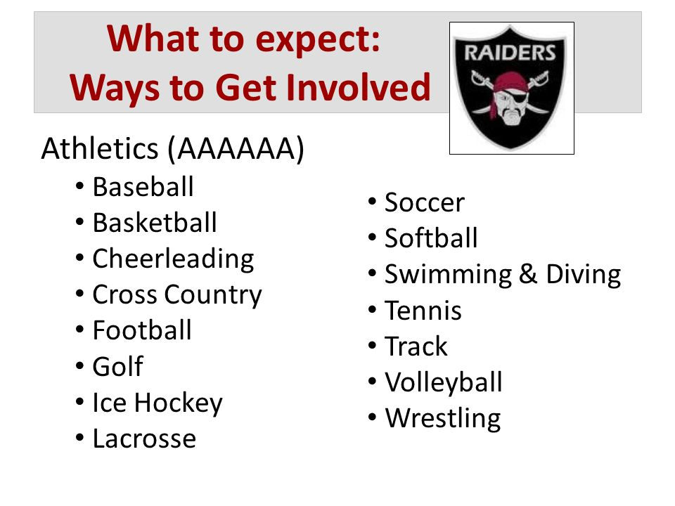 What to expect: Ways to Get Involved