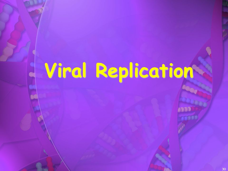 Viral Replication