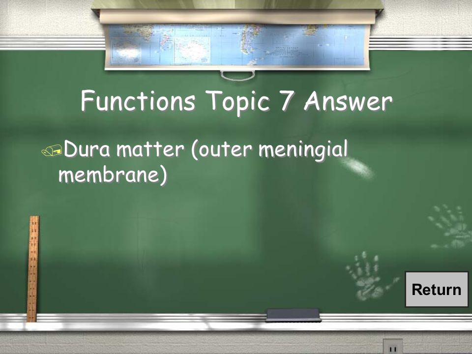 Functions Topic 7 Answer