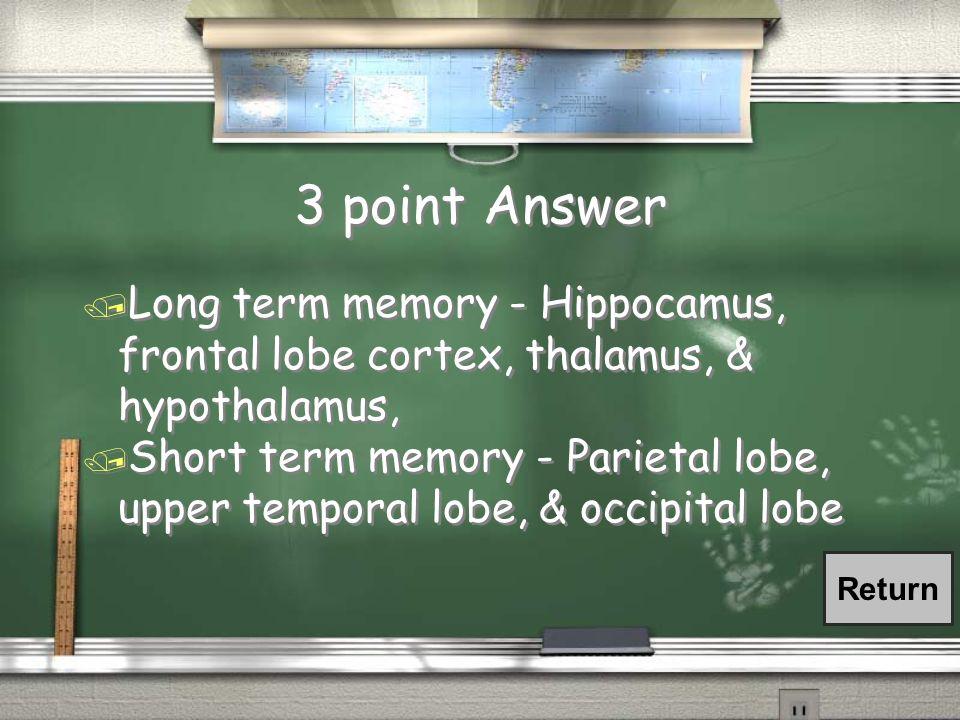 3 point Answer Long term memory - Hippocamus, frontal lobe cortex, thalamus, & hypothalamus,