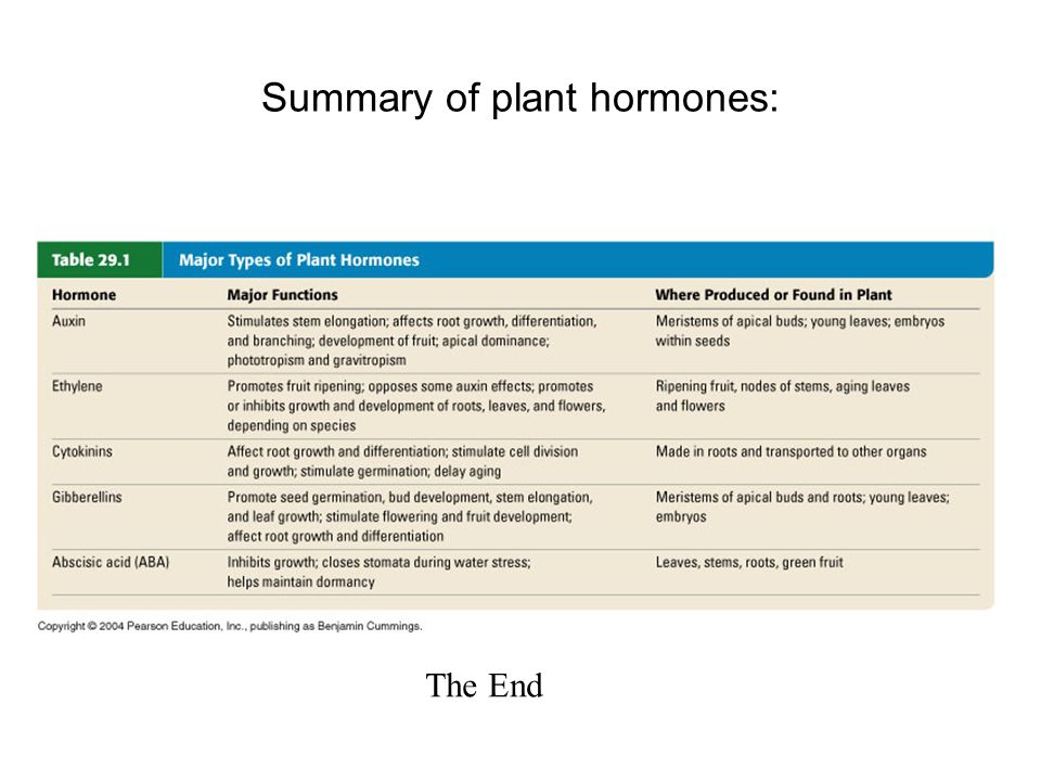 plant hormones and induction biology essay Plant hormones and plant growth regulators in plant tissue culture article (pdf available) in in vitro cellular & developmental biology - plant 32(4):272-289 october 1996 with 26,492 reads.