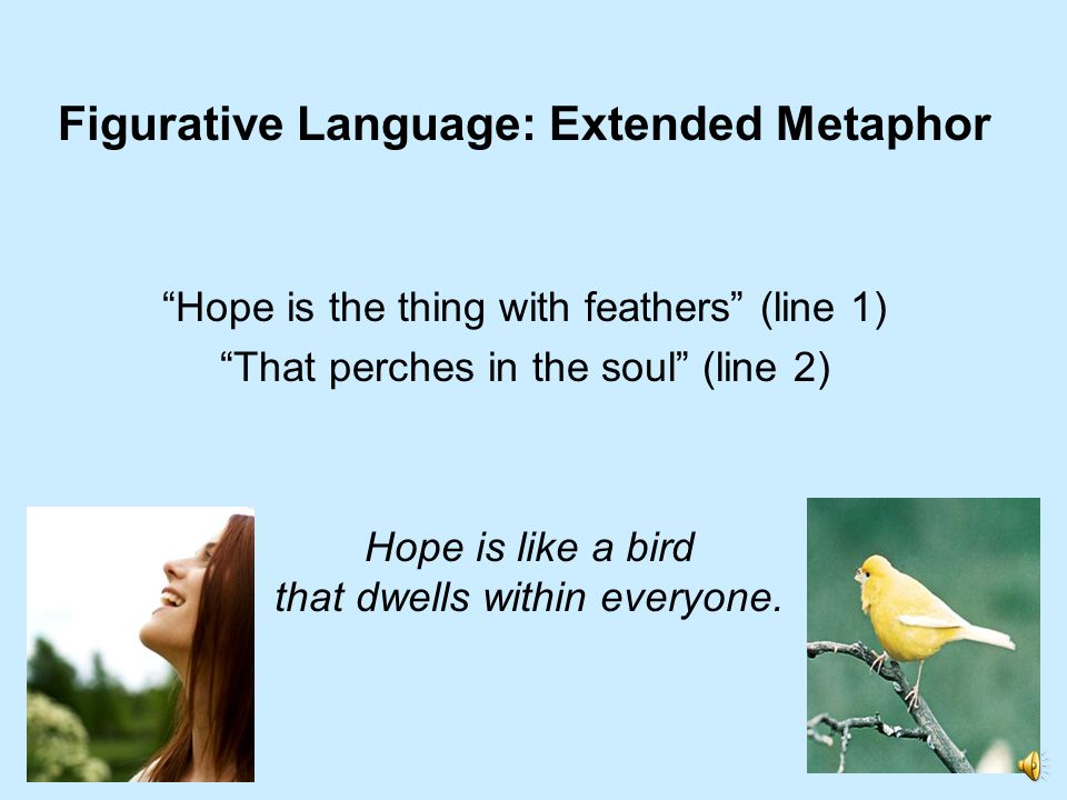 Figurative Language: Extended Metaphor