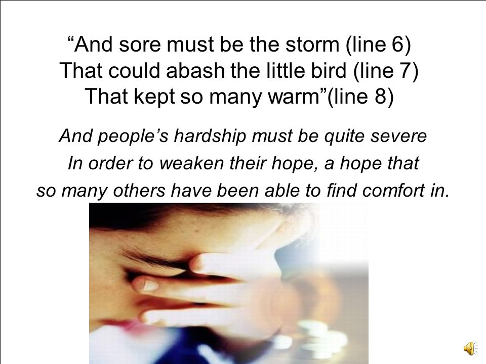 And sore must be the storm (line 6) That could abash the little bird (line 7) That kept so many warm (line 8)