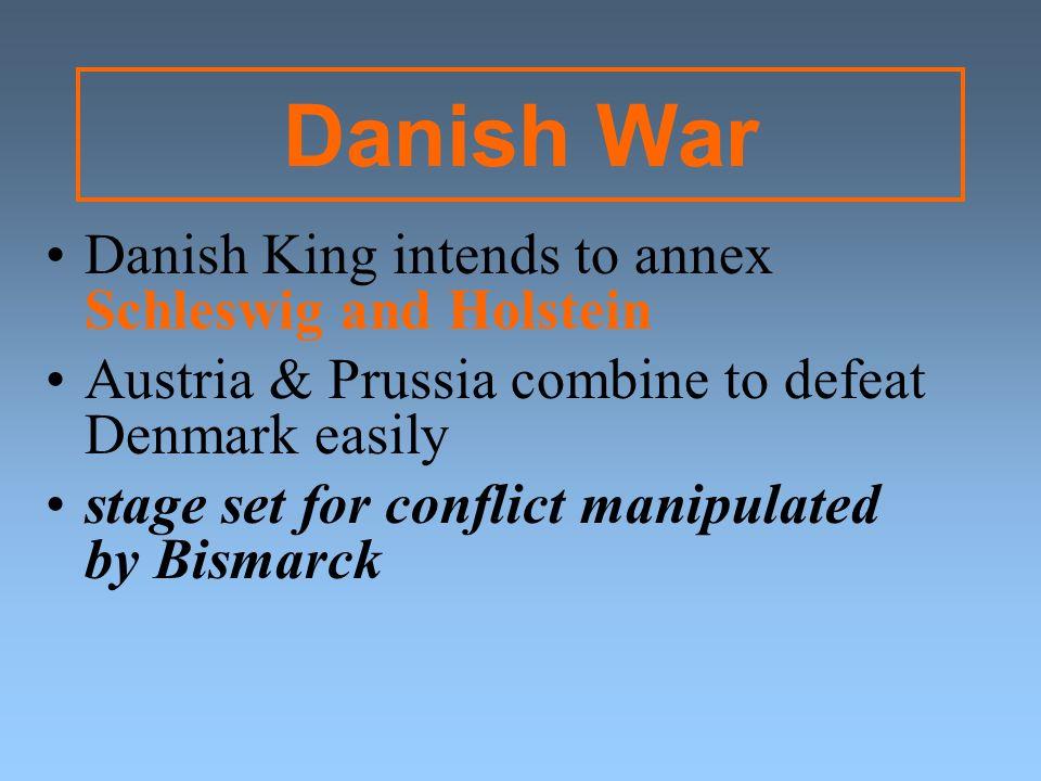 Danish War Danish King intends to annex Schleswig and Holstein