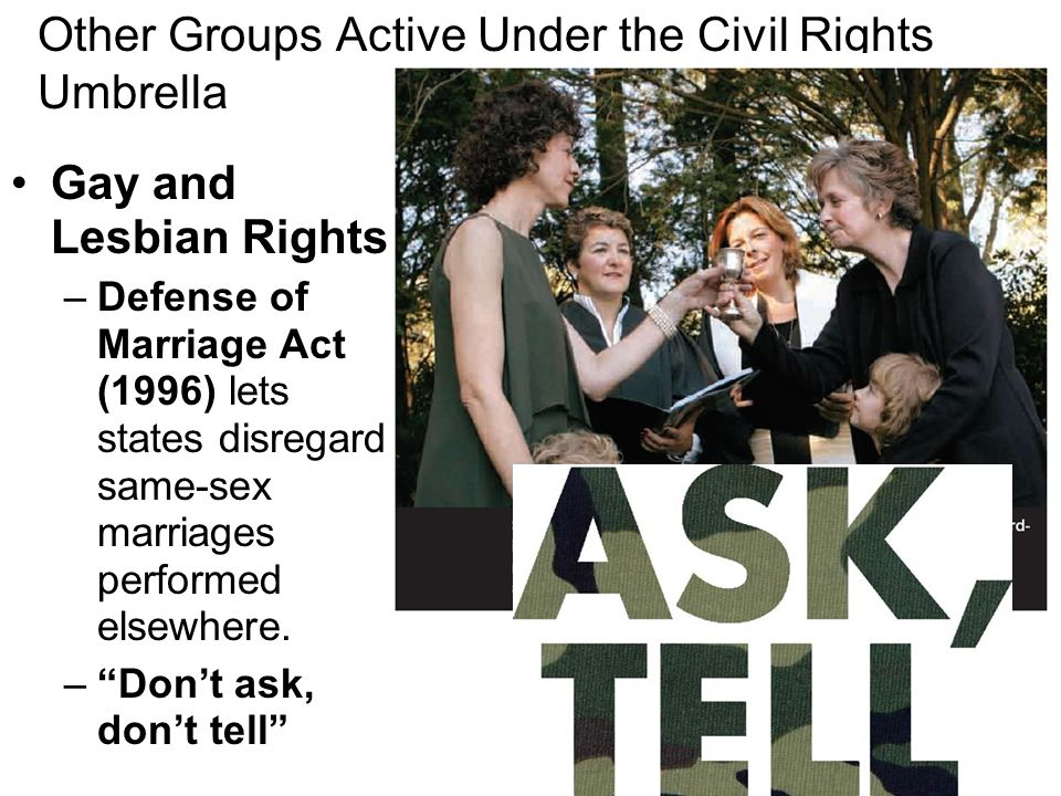 Other Groups Active Under the Civil Rights Umbrella