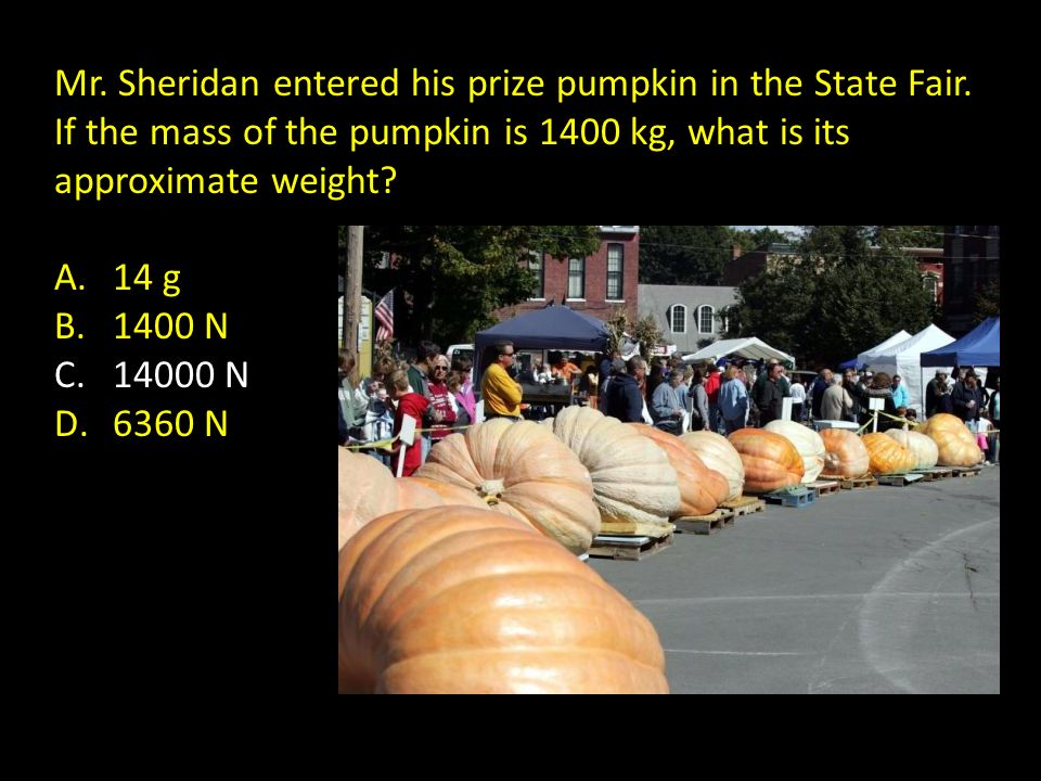 Mr. Sheridan entered his prize pumpkin in the State Fair