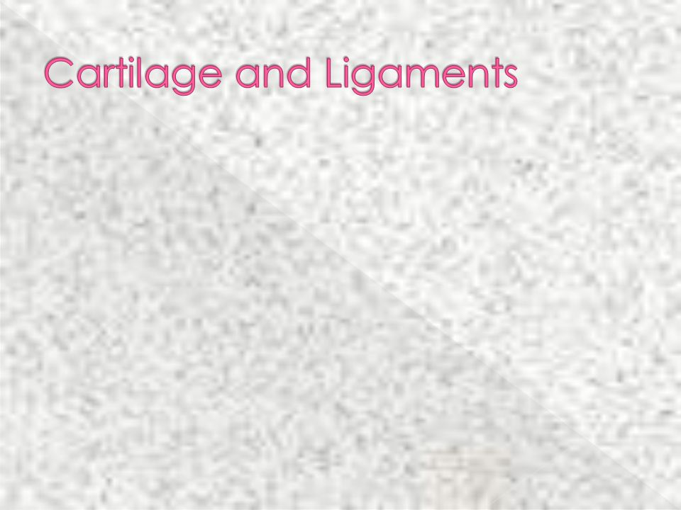 Cartilage and Ligaments