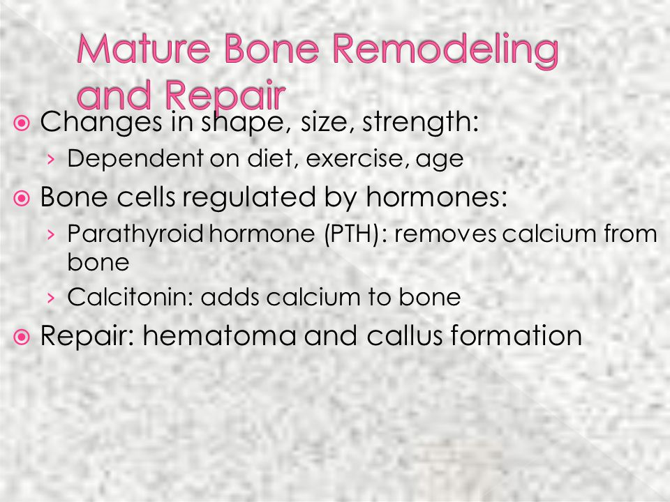 Mature Bone Remodeling and Repair