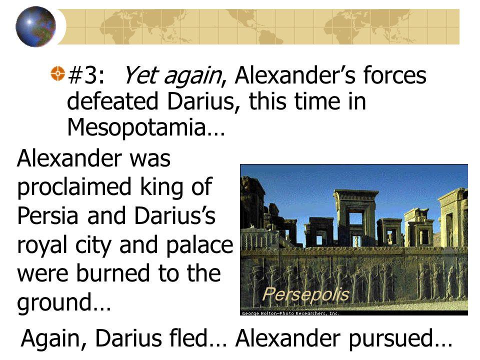 Again, Darius fled… Alexander pursued…