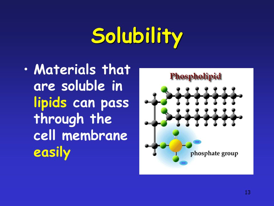 Solubility Materials that are soluble in lipids can pass through the cell membrane easily