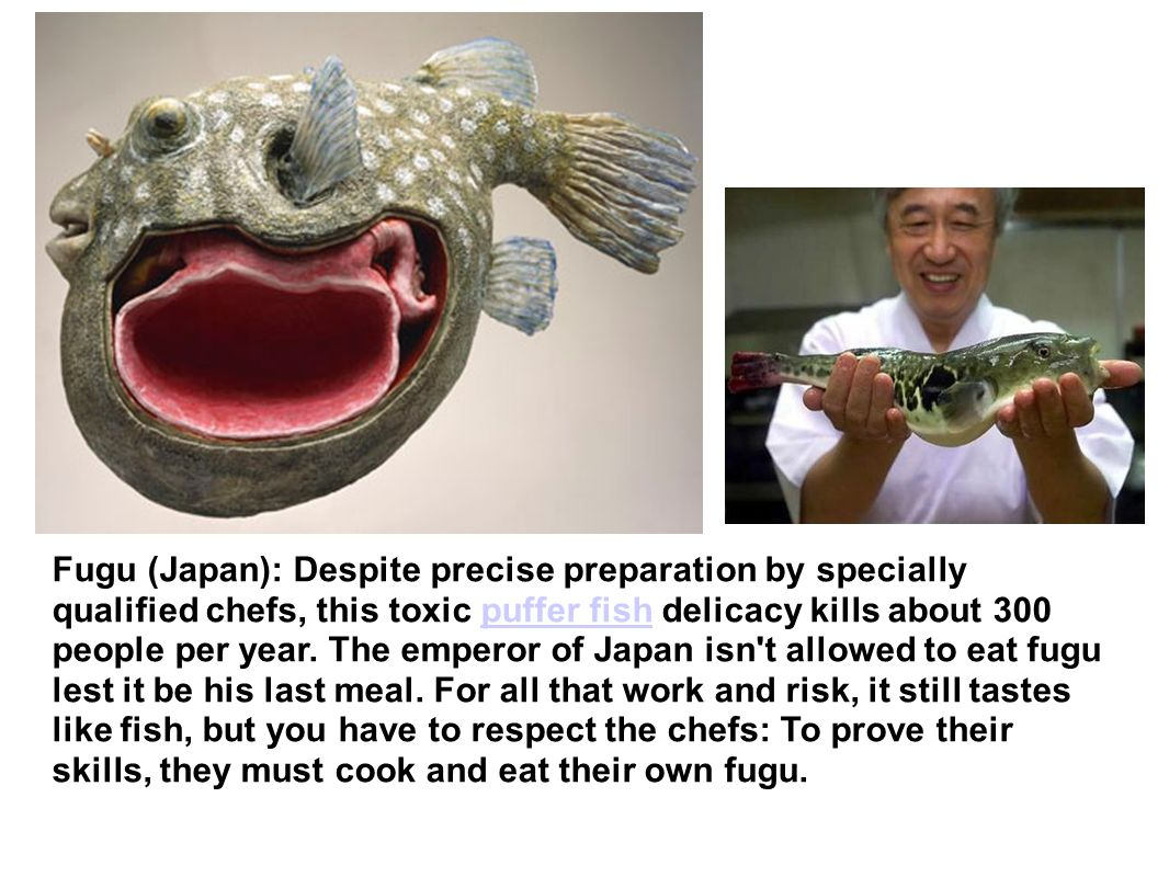 Fugu (Japan): Despite precise preparation by specially qualified chefs, this toxic puffer fish delicacy kills about 300 people per year.