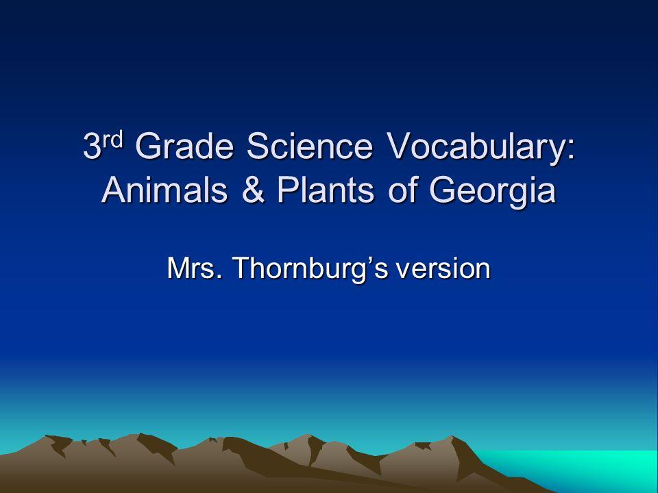 3rd Grade Science Vocabulary: Animals & Plants of Georgia