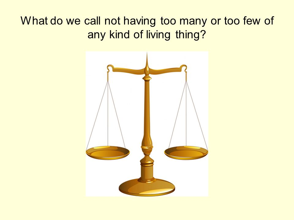 What do we call not having too many or too few of any kind of living thing