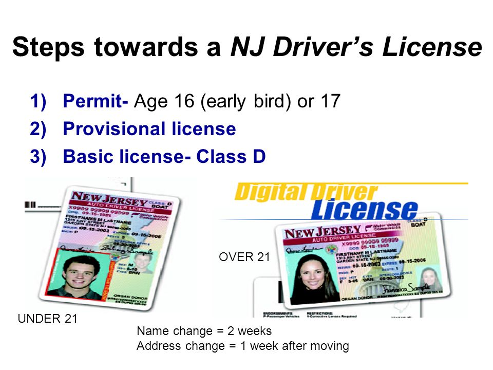 age requirements for driver s license raising Driving in bahamas  requirements to driving age in different rental car agencies  drivers are obligatory to carry while driving a valid driver license, .