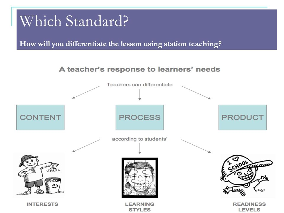 Which Standard How will you differentiate the lesson using station teaching