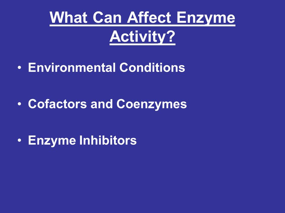 What Can Affect Enzyme Activity