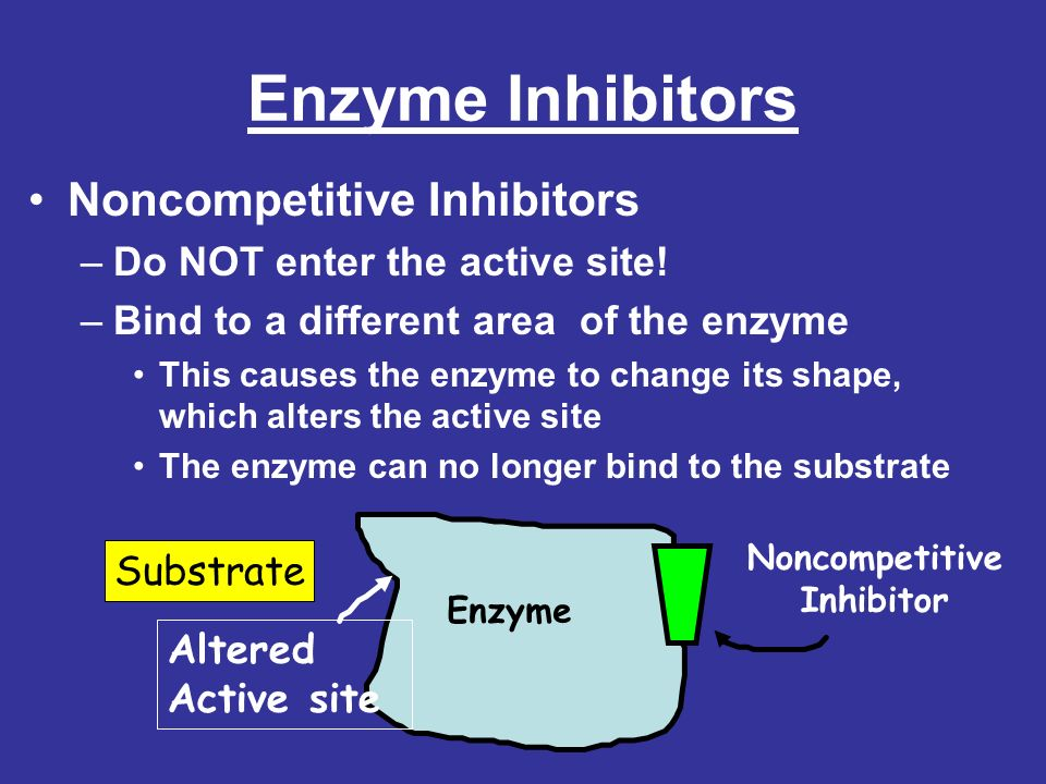 Enzyme Inhibitors Noncompetitive Inhibitors