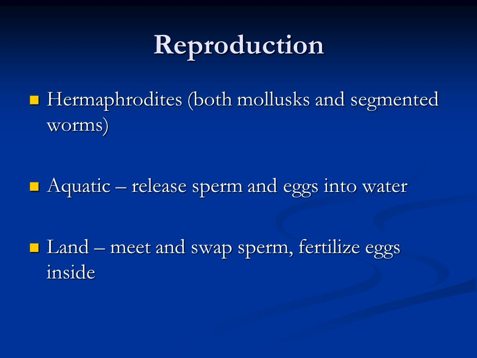Reproduction Hermaphrodites (both mollusks and segmented worms)
