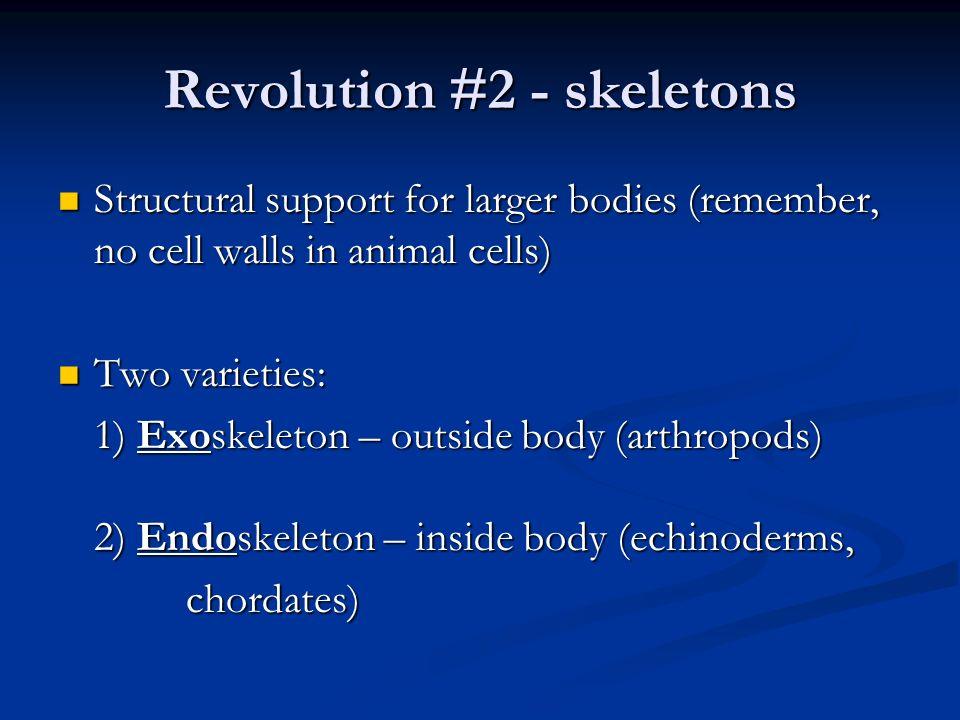 Revolution #2 - skeletons