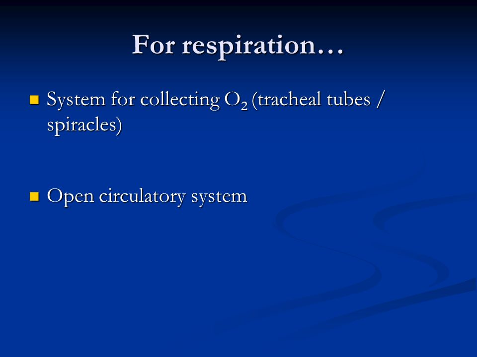 For respiration… System for collecting O2 (tracheal tubes / spiracles)
