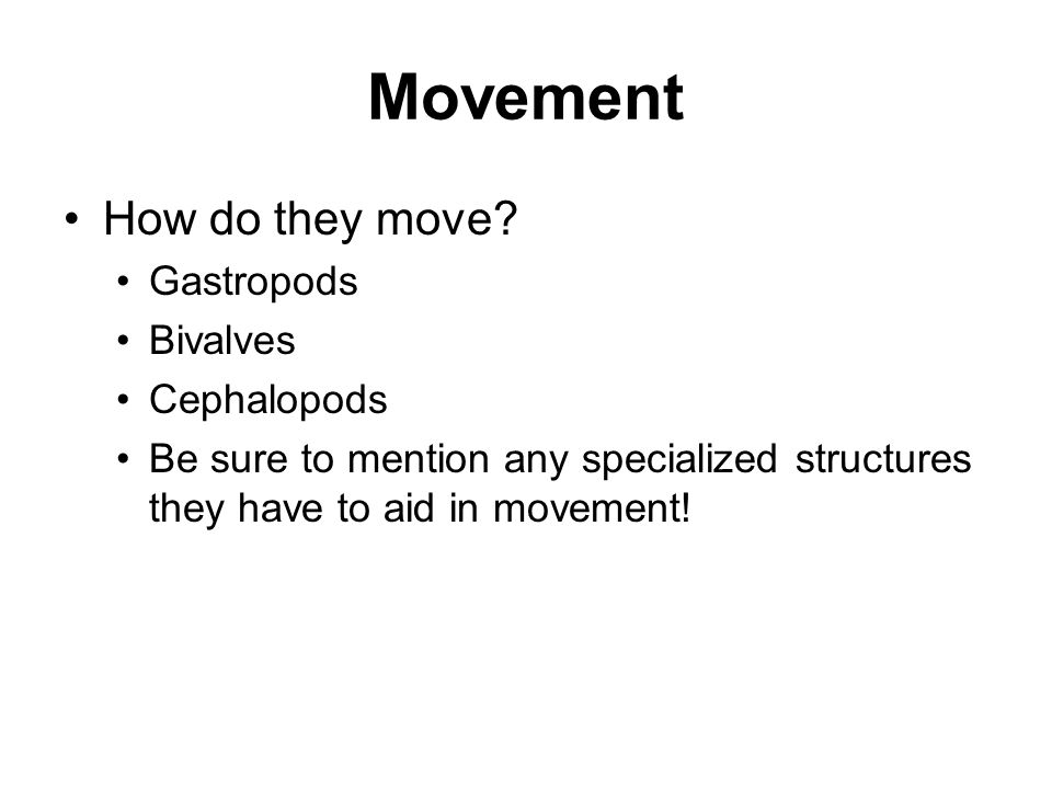Movement How do they move Gastropods Bivalves Cephalopods