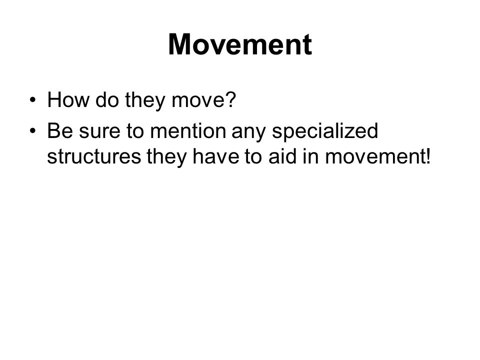 Movement How do they move