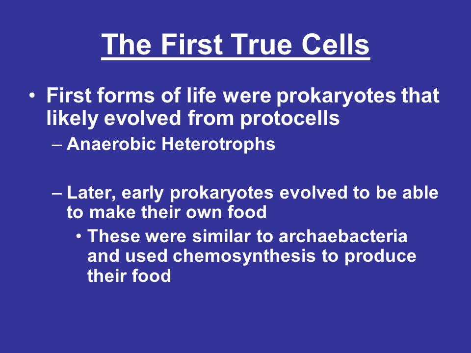 The First True Cells First forms of life were prokaryotes that likely evolved from protocells. Anaerobic Heterotrophs.