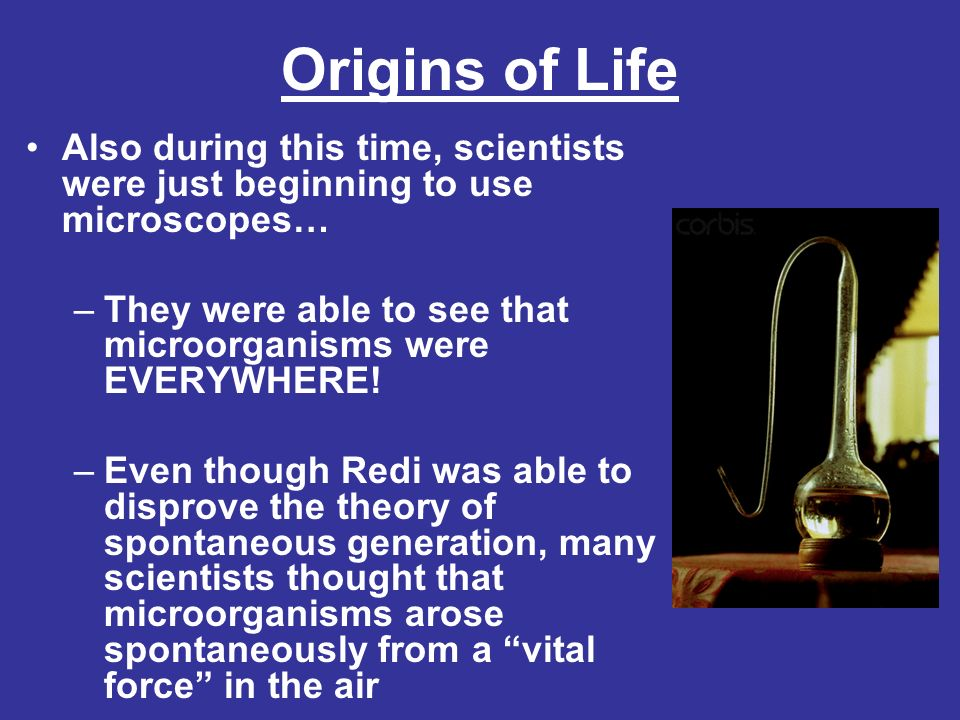 Origins of Life Also during this time, scientists were just beginning to use microscopes… They were able to see that microorganisms were EVERYWHERE!