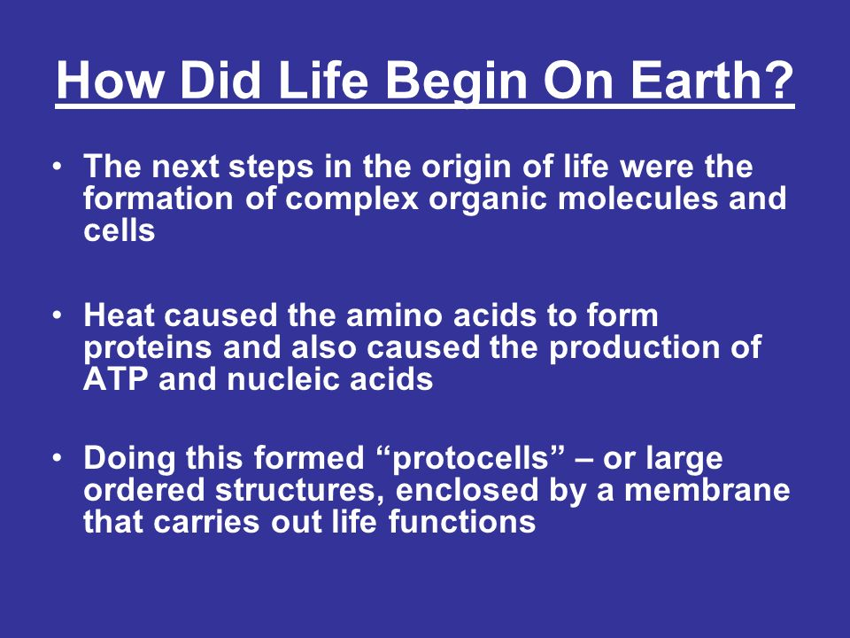 How Did Life Begin On Earth