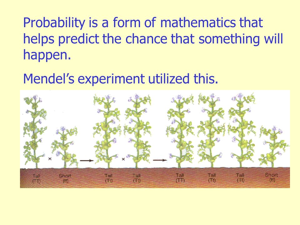 Probability is a form of mathematics that helps predict the chance that something will happen.