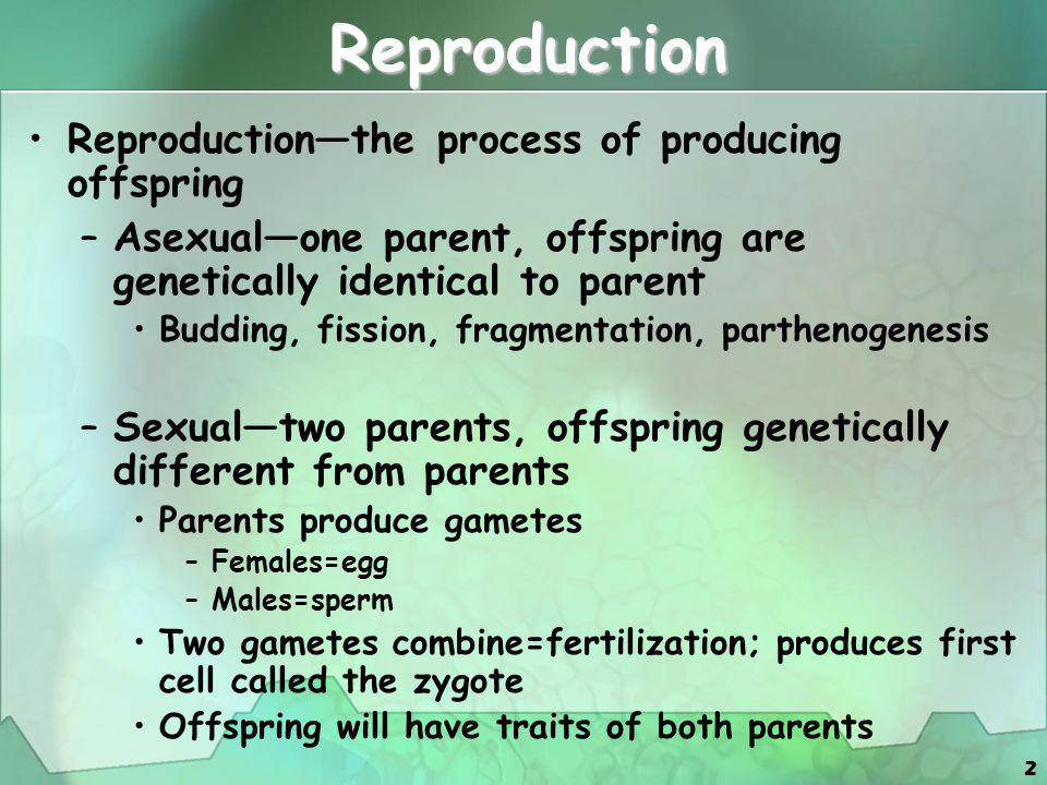 Reproduction Reproduction—the process of producing offspring