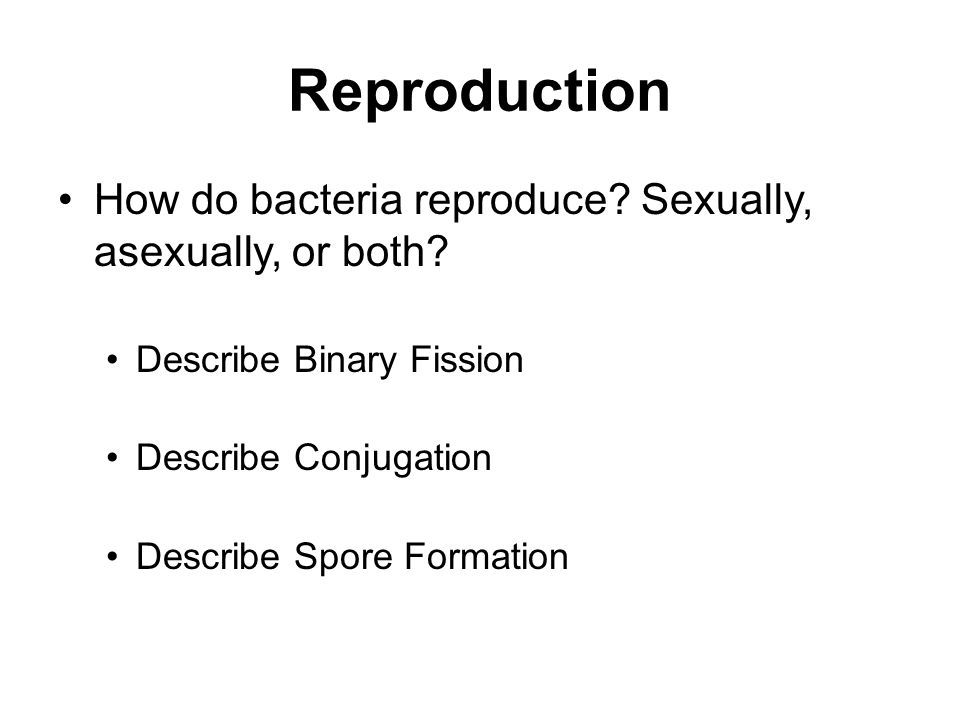 Reproduction How do bacteria reproduce Sexually, asexually, or both