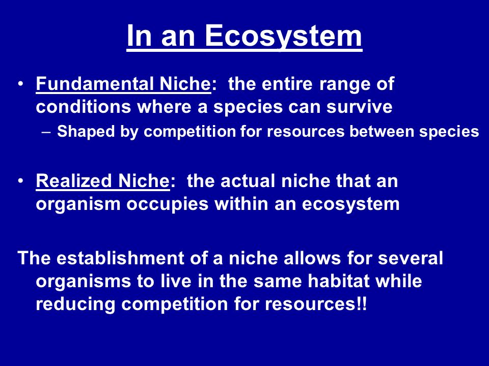 In an Ecosystem Fundamental Niche: the entire range of conditions where a species can survive. Shaped by competition for resources between species.