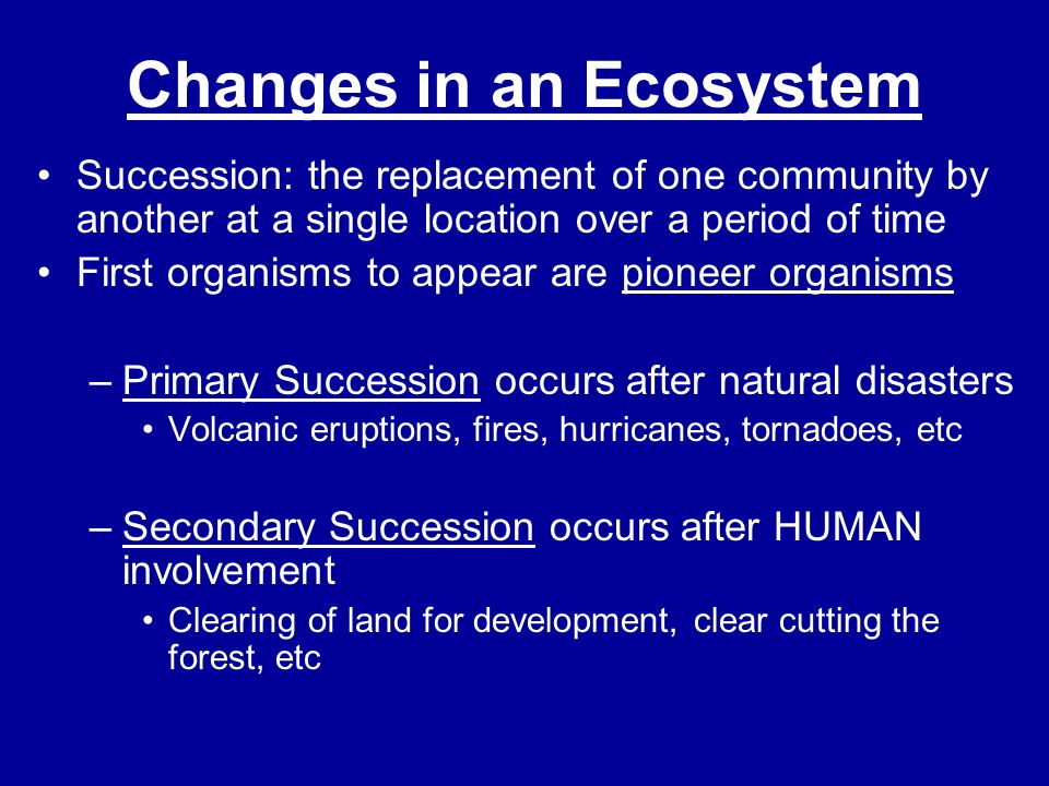 Changes in an Ecosystem