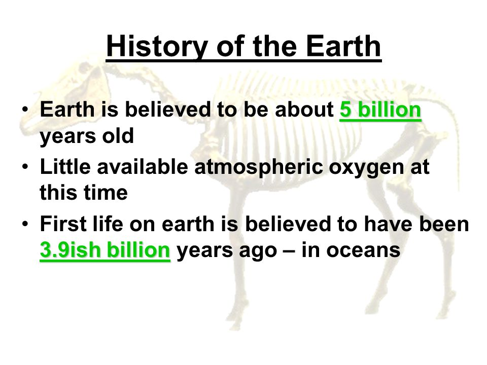 History of the Earth Earth is believed to be about 5 billion years old