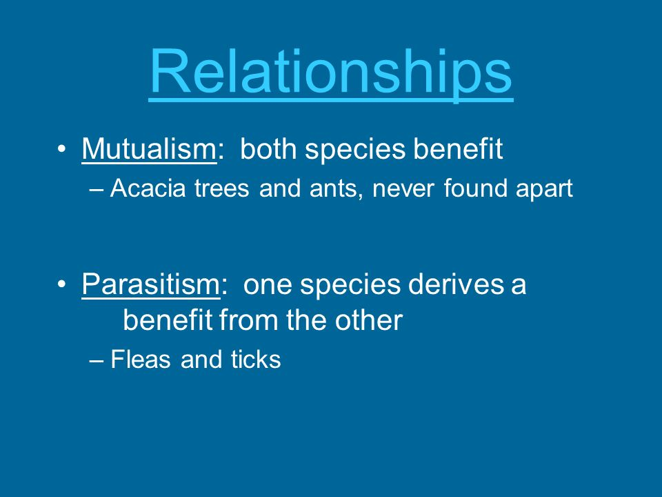 Relationships Mutualism: both species benefit