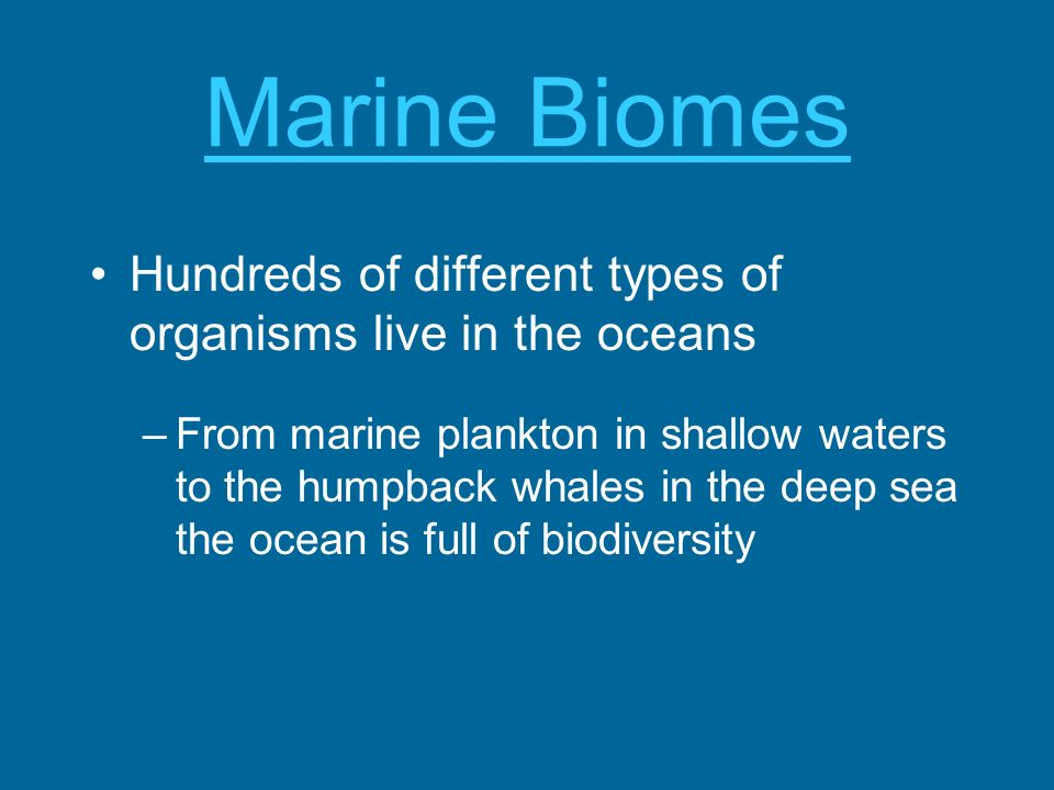 Marine Biomes Hundreds of different types of organisms live in the oceans.