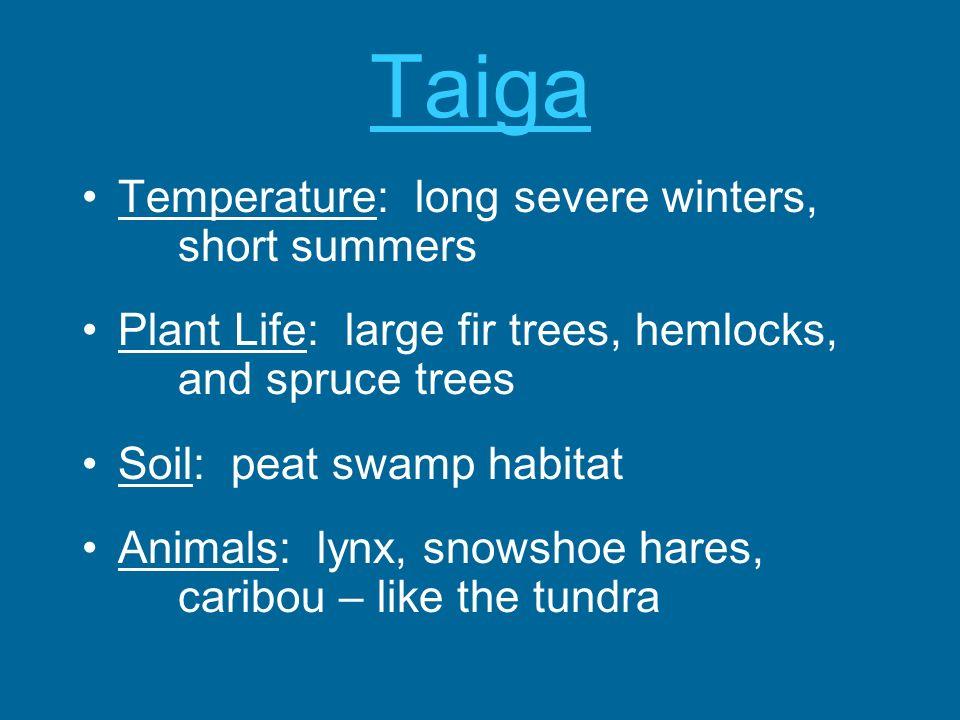 Taiga Temperature: long severe winters, short summers