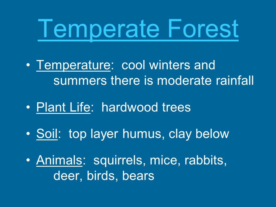 Temperate Forest Temperature: cool winters and summers there is moderate rainfall. Plant Life: hardwood trees.
