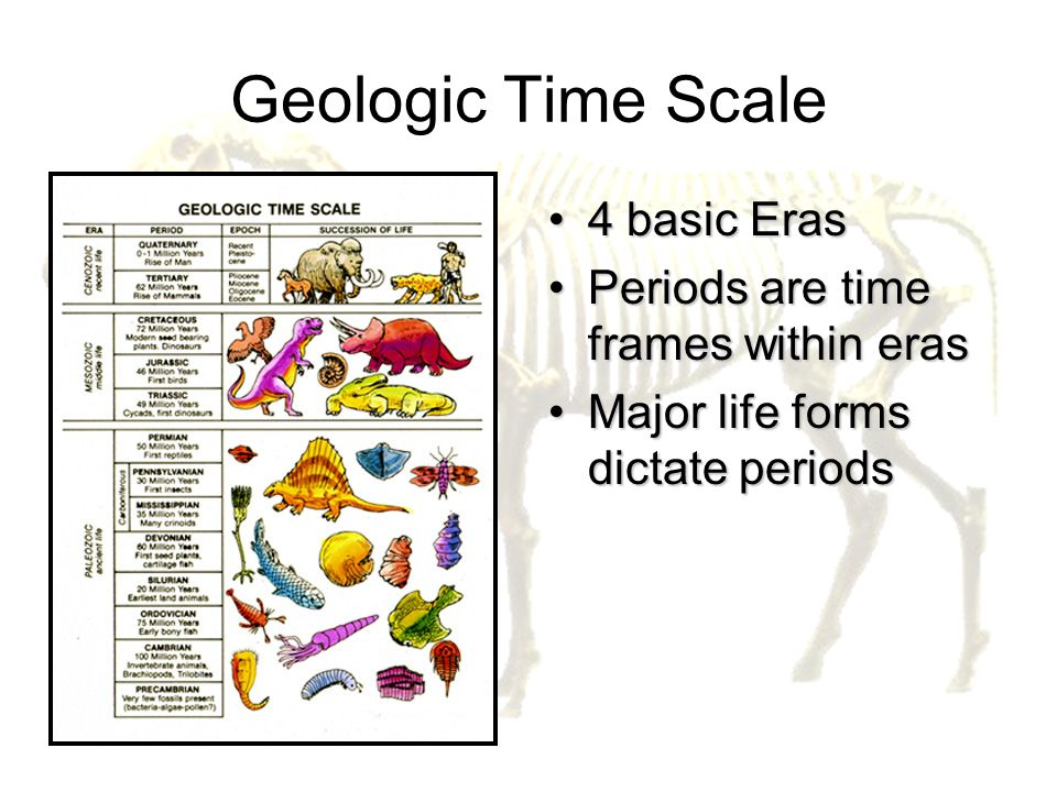 Geologic Time Scale 4 basic Eras Periods are time frames within eras
