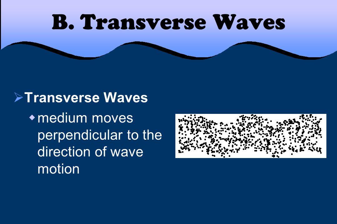 B. Transverse Waves Transverse Waves