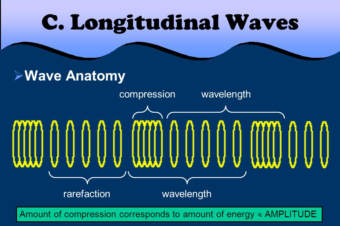 C. Longitudinal Waves Wave Anatomy compression wavelength rarefaction