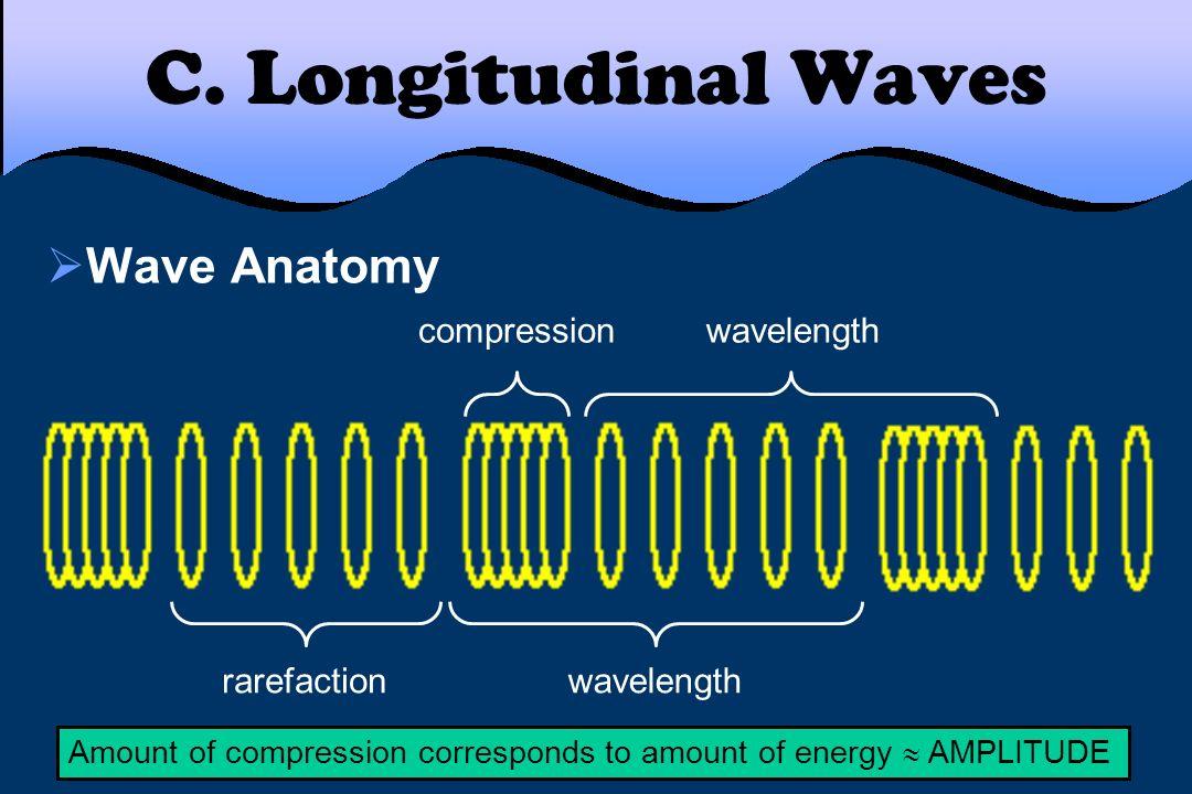 C. Longitudinal Waves Wave Anatomy compression wavelength rarefaction