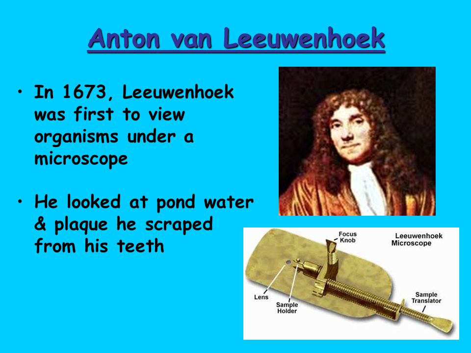 Anton van Leeuwenhoek In 1673, Leeuwenhoek was first to view organisms under a microscope.