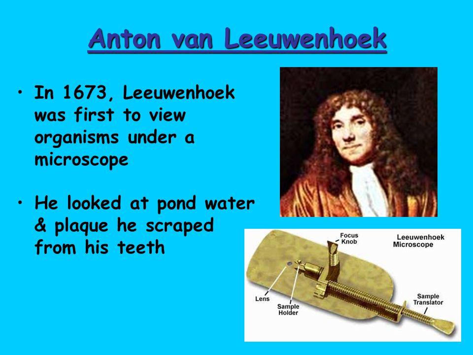 Anton van Leeuwenhoek In 1673, Leeuwenhoek was first to view organisms under a microscope.