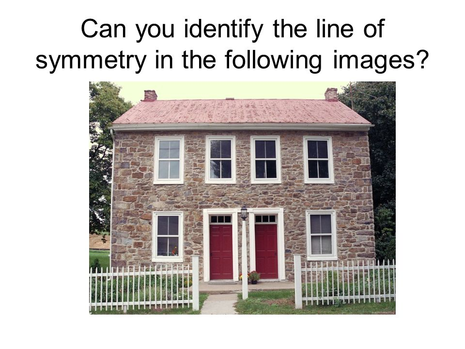Can you identify the line of symmetry in the following images