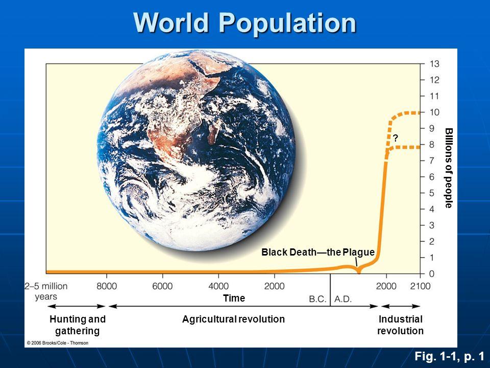 Black Death—the Plague Agricultural revolution