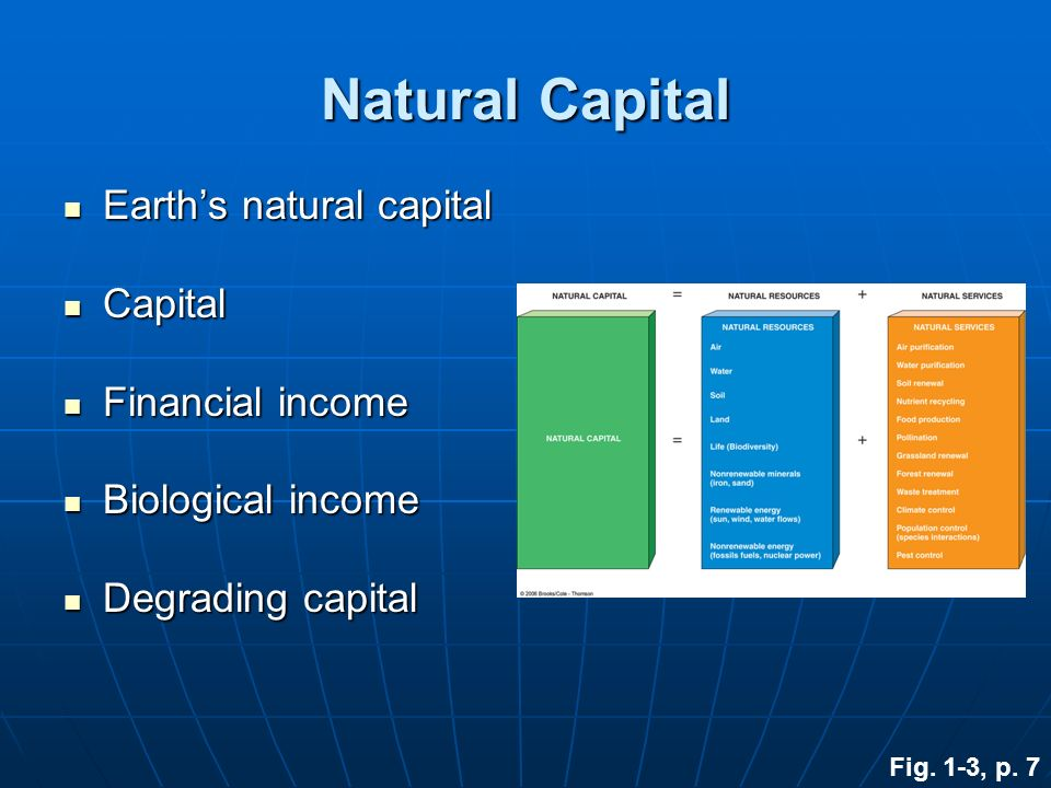 Natural Capital Earth's natural capital Capital Financial income